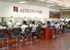 Cách chuyển tiền qua ngân hàng Agribank qua điện thoại đơn giản