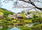 Tận hưởng những tiện ích tốt khi sử dụng dịch vụ chuyển tiền Hàn Quốc